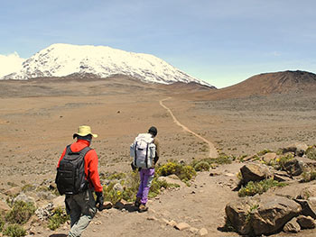 7-Day-Machame-Route-Itinerary-kili