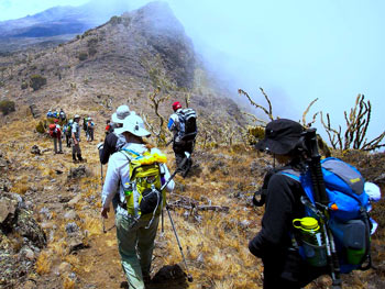 7-Day-Machame-Route-Itinerary