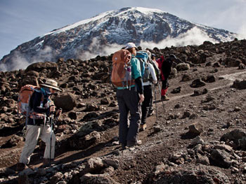 8-Day-Lemosho-Route-kilimanjaro